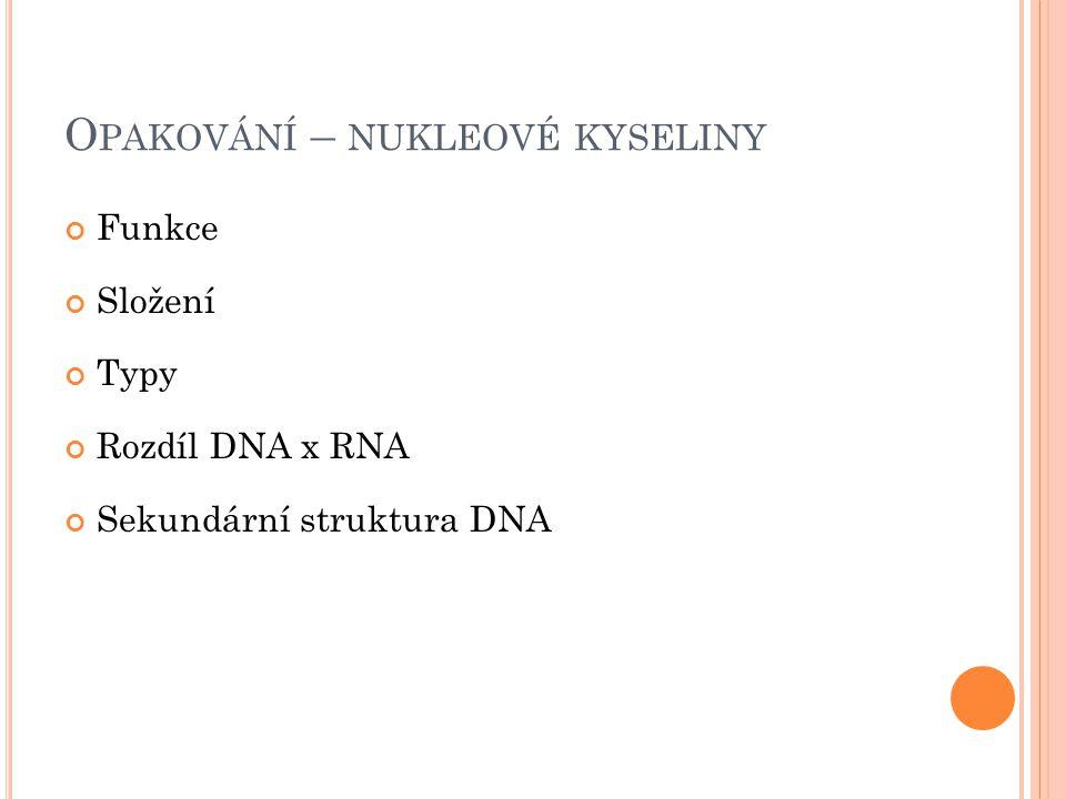 S TRUKTURA NK Obr. 1: struktura DNA