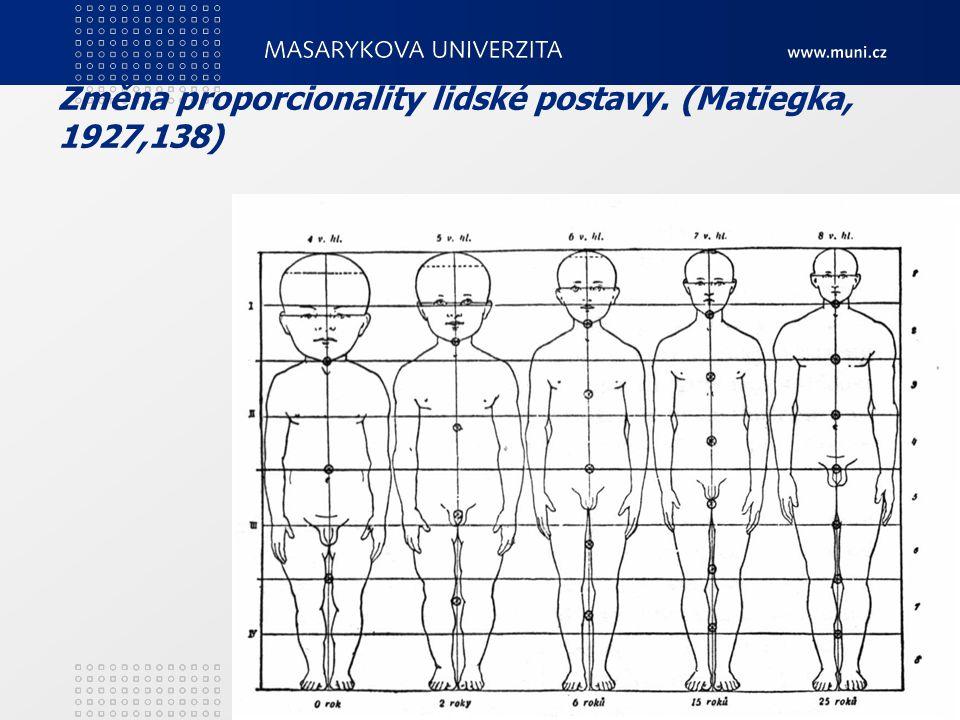 Změna proporcionality lidské postavy. (Matiegka, 1927,138) 3. Teoretické zákonitosti motorického vývoje21