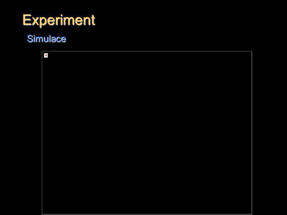 Experiment Simulace