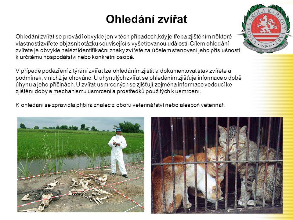 Ohledání zvířat Ohledání zvířat se provádí obvykle jen v těch případech,kdy je třeba zjištěním některé vlastnosti zvířete objasnit otázku související