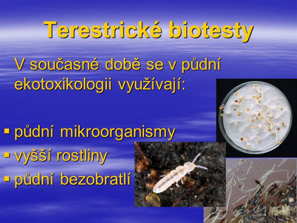 Terestrické biotesty V současné době se v půdní ekotoxikologii využívají:  půdní mikroorganismy  vyšší rostliny  půdní bezobratlí