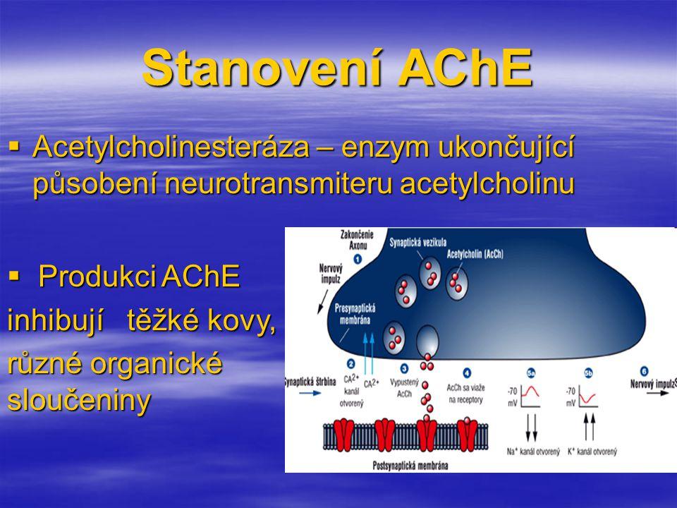 Stanovení AChE  Acetylcholinesteráza – enzym ukončující působení neurotransmiteru acetylcholinu  Produkci AChE inhibují těžké kovy, různé organické