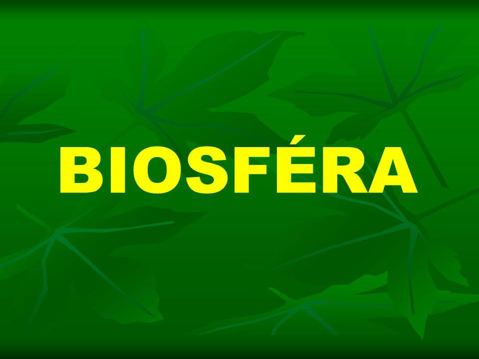  živý obal Země  souhrn všech živých organismů na souši, ve vodě i ve vzduchu včetně jejich prostředí  BIOGEOGRAFIE - věda zkoumající biosféru FYTOGEOGRAFIE - zkoumá prostorové rozšíření rostlin ZOOGEOGRAFIE – zkoumá prostorové rozšíření živočichů