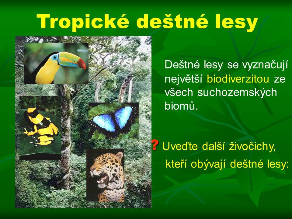 Uveďte další živočichy, kteří obývají deštné lesy: Deštné lesy se vyznačují největší biodiverzitou ze všech suchozemských biomů.