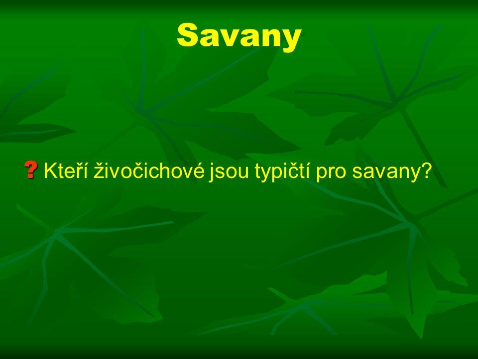 Savany ? ? Kteří živočichové jsou typičtí pro savany?