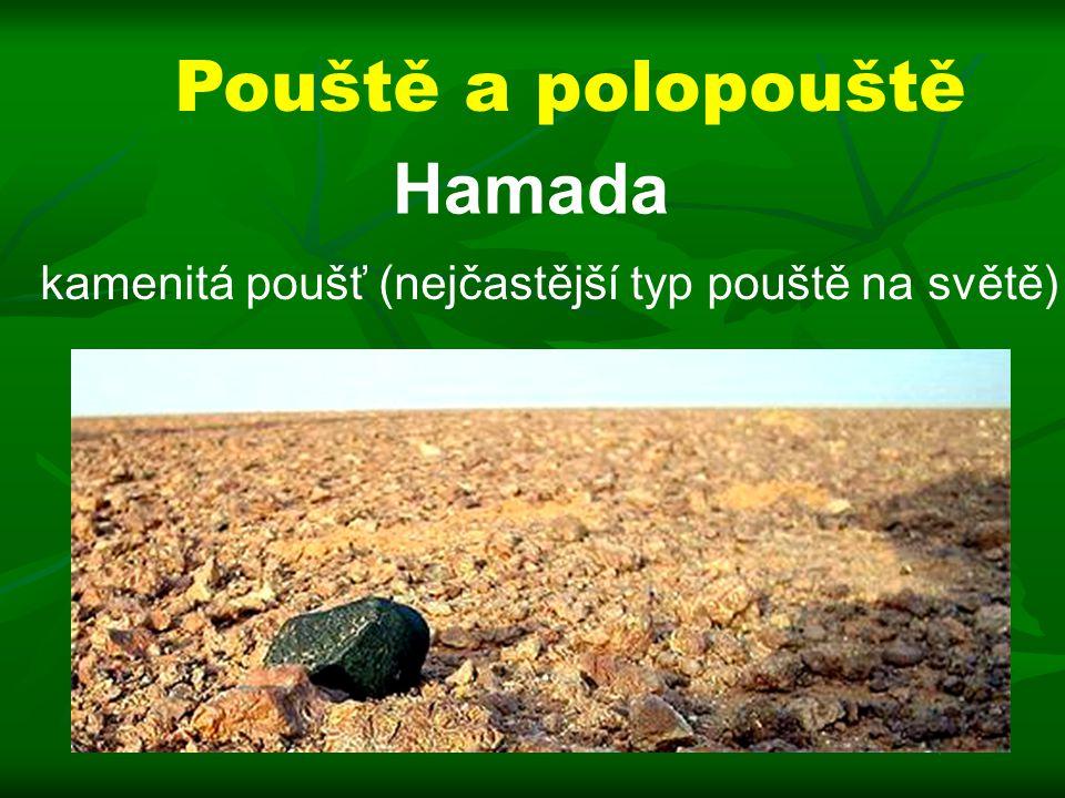 Pouště a polopouště Hamada kamenitá poušť (nejčastější typ pouště na světě)