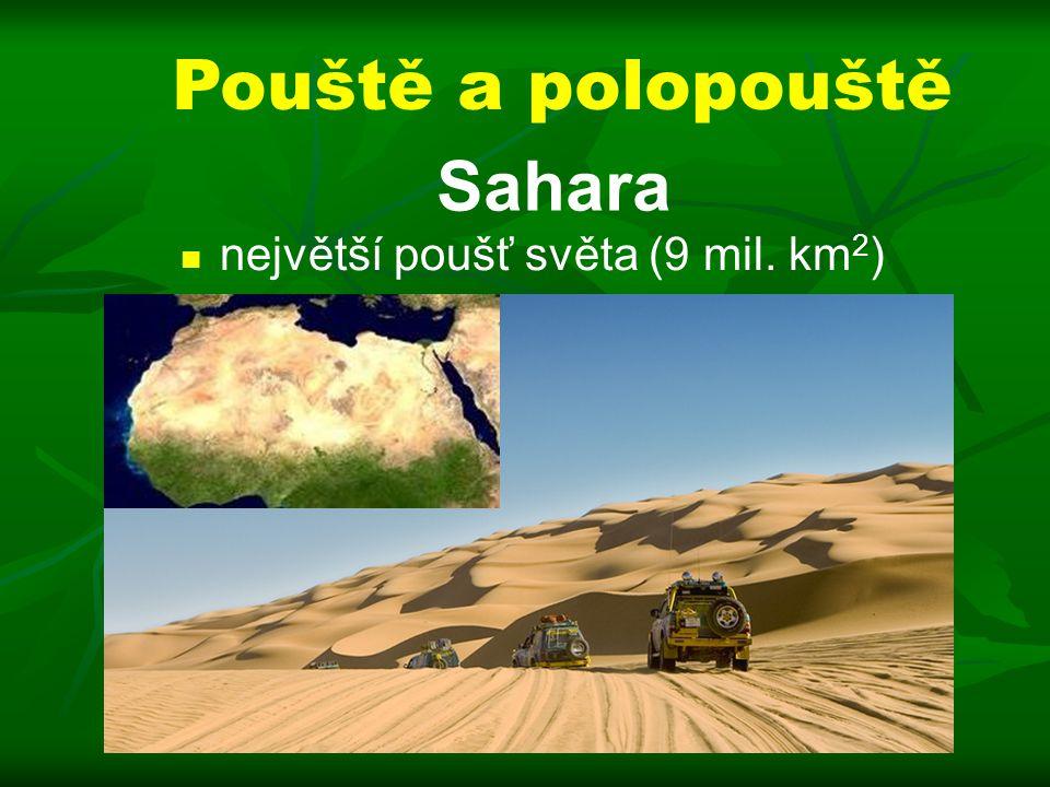 Pouště a polopouště Sahara největší poušť světa (9 mil. km 2 )
