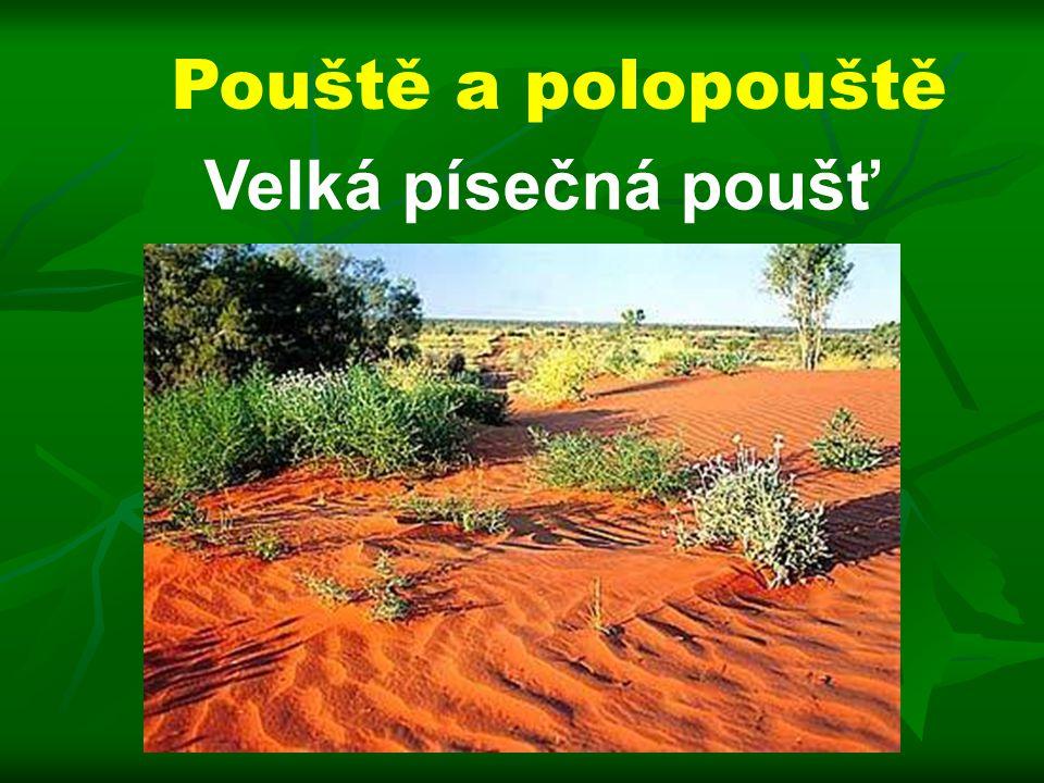 Pouště a polopouště Velká písečná poušť