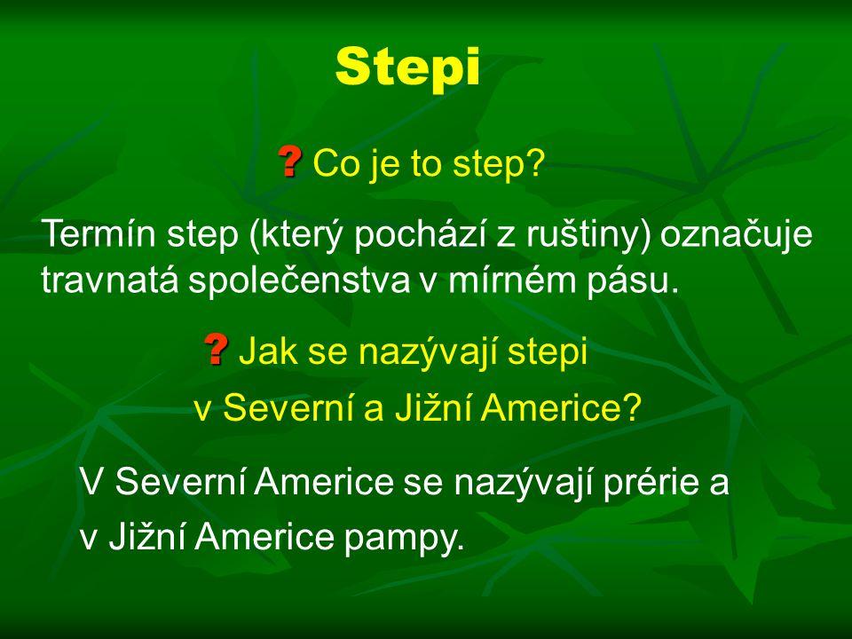 Stepi .Co je to step.