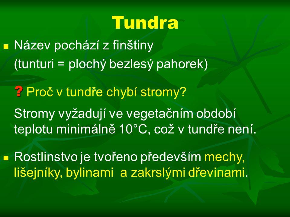 Tundra Název pochází z finštiny (tunturi = plochý bezlesý pahorek) .