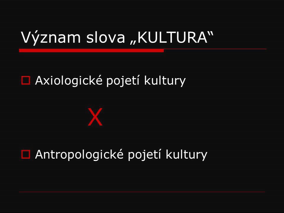 """Axiologické pojetí kultury  """"péče o půdu (colo, coléré, …cultus)   """"péče o duši (M."""