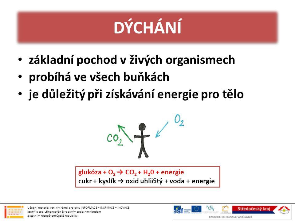 základní pochod v živých organismech probíhá ve všech buňkách je důležitý při získávání energie pro tělo DÝCHÁNÍ glukóza + O 2 → CO 2 + H 2 0 + energi