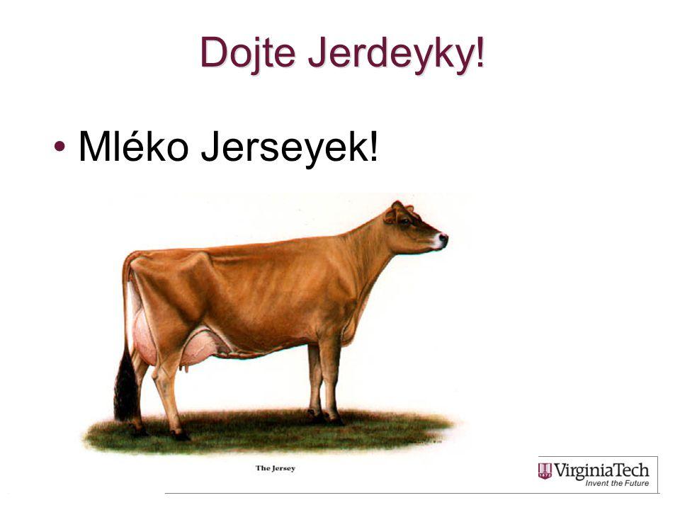 Dojte Jerdeyky! Mléko Jerseyek! 32