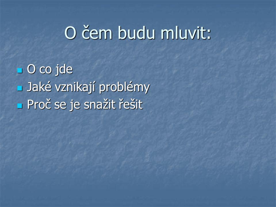 O čem budu mluvit: O co jde O co jde Jaké vznikají problémy Jaké vznikají problémy Proč se je snažit řešit Proč se je snažit řešit