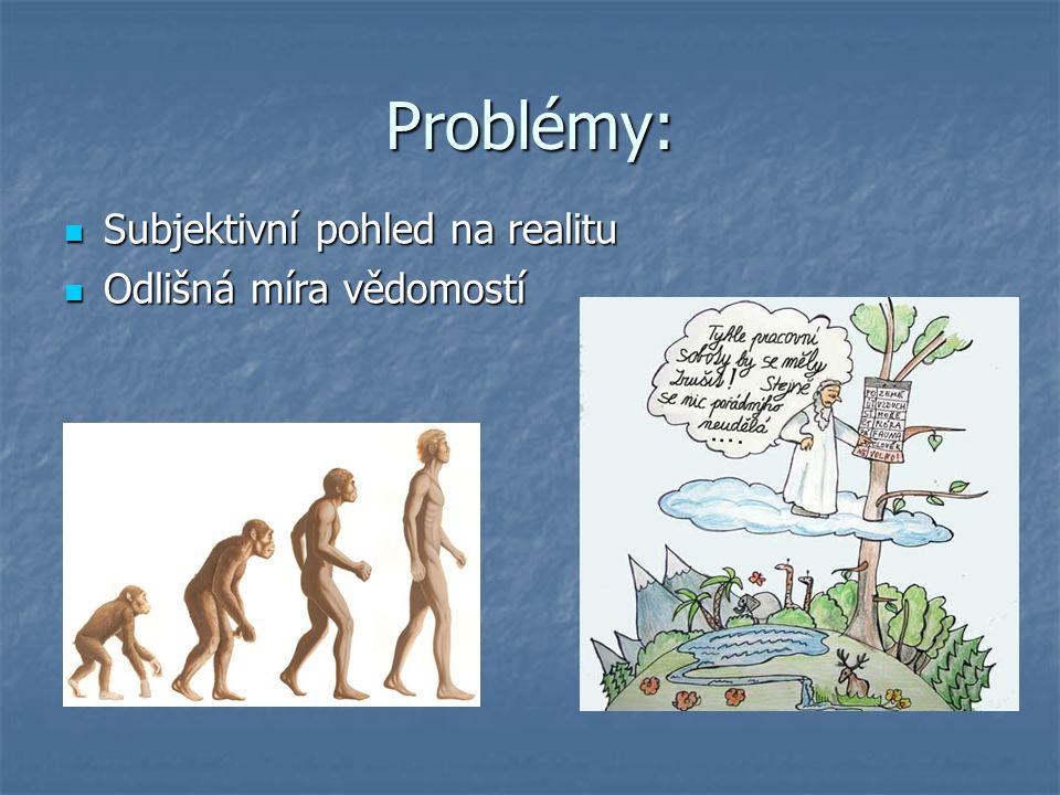 Problémy: Subjektivní pohled na realitu Subjektivní pohled na realitu Odlišná míra vědomostí Odlišná míra vědomostí