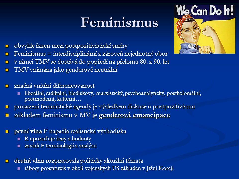 Feminismus obvykle řazen mezi postpozitivistické směry obvykle řazen mezi postpozitivistické směry Feminismus = interdisciplinární a zároveň nejednotn