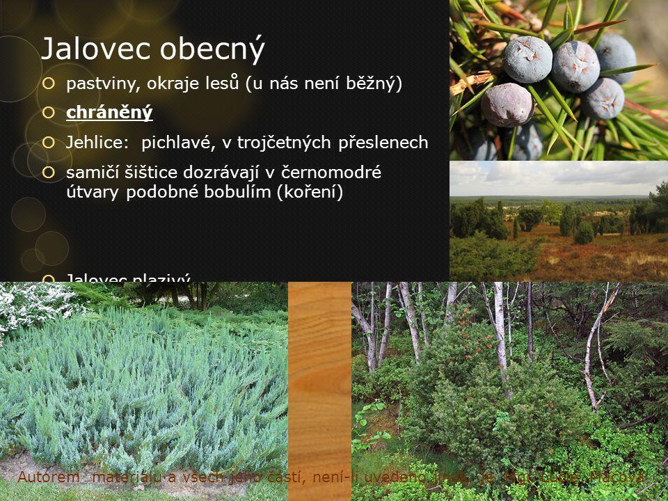 Jalovec obecný  pastviny, okraje lesů (u nás není běžný)  chráněný  Jehlice:pichlavé, v trojčetných přeslenech  samičí šištice dozrávají v černomo