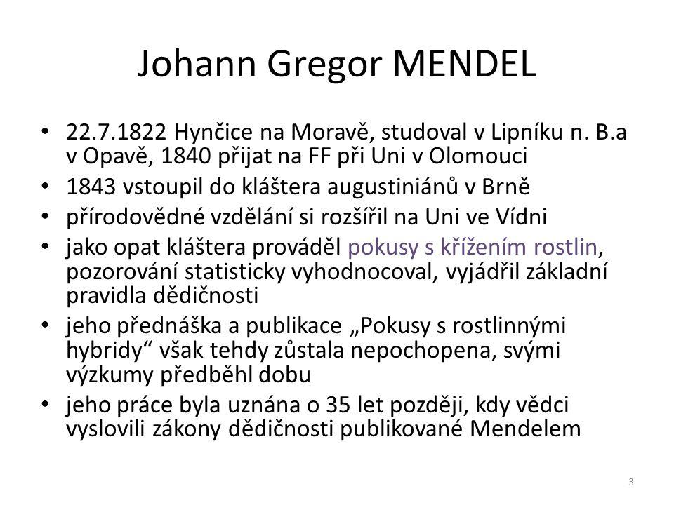 Johann Gregor MENDEL 22.7.1822 Hynčice na Moravě, studoval v Lipníku n. B.a v Opavě, 1840 přijat na FF při Uni v Olomouci 1843 vstoupil do kláštera au