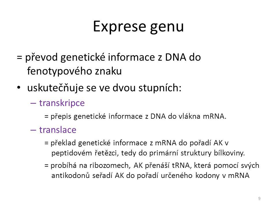 Exprese genu = převod genetické informace z DNA do fenotypového znaku uskutečňuje se ve dvou stupních: – transkripce = přepis genetické informace z DN