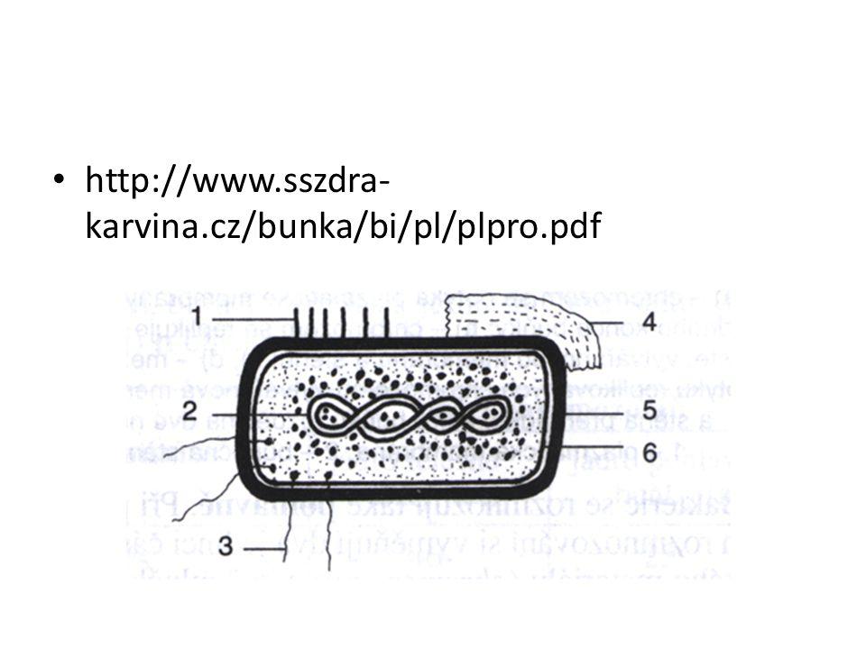 http://www.sszdra- karvina.cz/bunka/bi/pl/plpro.pdf