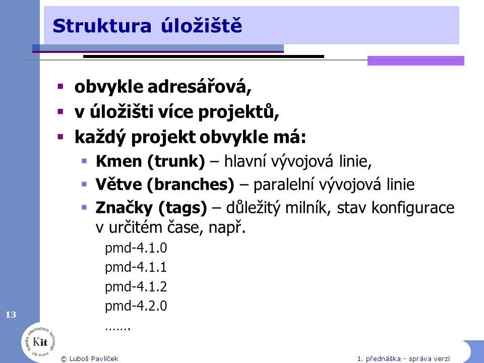 13 © Luboš Pavlíček1.