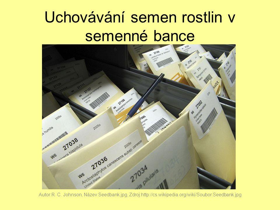 Uchovávání semen rostlin v semenné bance Autor:R. C. Johnson, Název:Seedbank.jpg, Zdroj:http://cs.wikipedia.org/wiki/Soubor:Seedbank.jpg