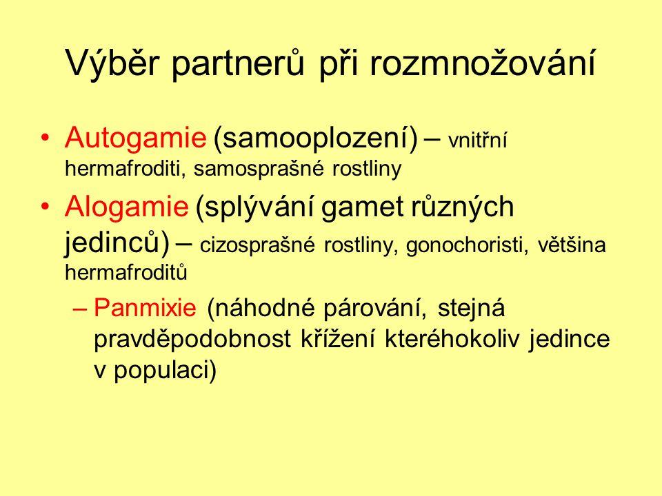 Výběr partnerů při rozmnožování Autogamie (samooplození) – vnitřní hermafroditi, samosprašné rostliny Alogamie (splývání gamet různých jedinců) – cizosprašné rostliny, gonochoristi, většina hermafroditů –Panmixie (náhodné párování, stejná pravděpodobnost křížení kteréhokoliv jedince v populaci)
