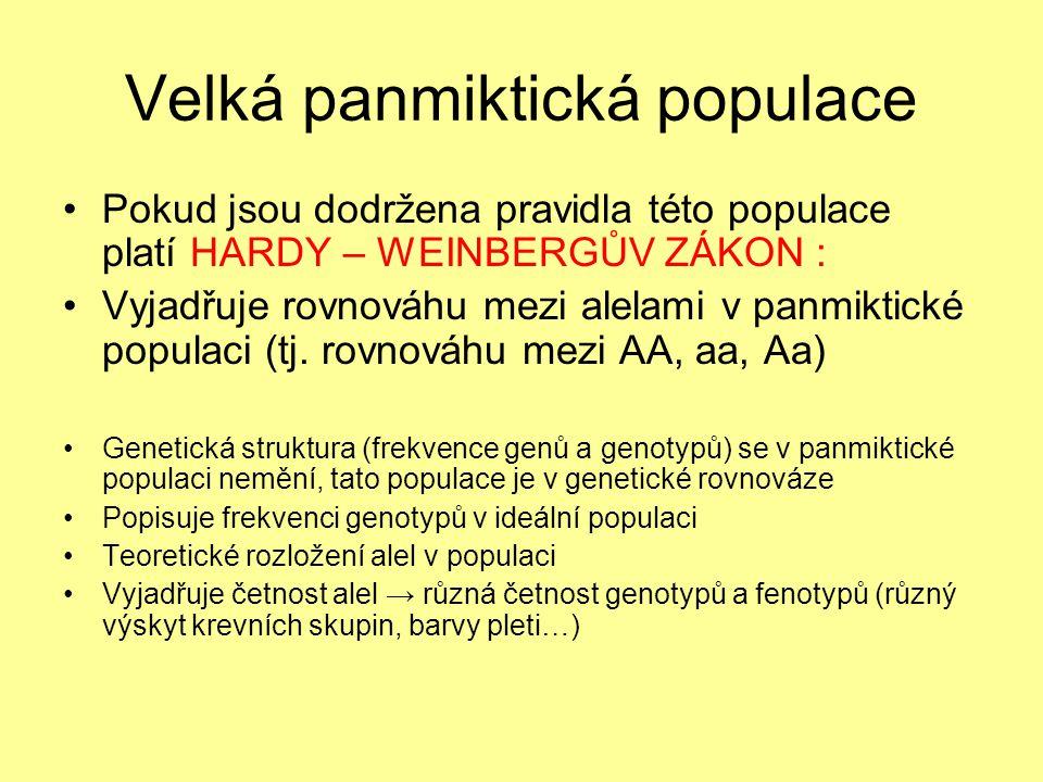 Velká panmiktická populace Pokud jsou dodržena pravidla této populace platí HARDY – WEINBERGŮV ZÁKON : Vyjadřuje rovnováhu mezi alelami v panmiktické populaci (tj.