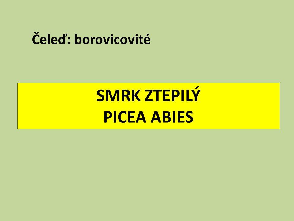"""Úkoly na příště 1.Kde rostl v ČR """"Král smrků (h=57 m, d₁,₃=1,6 m, věk 440 let)."""