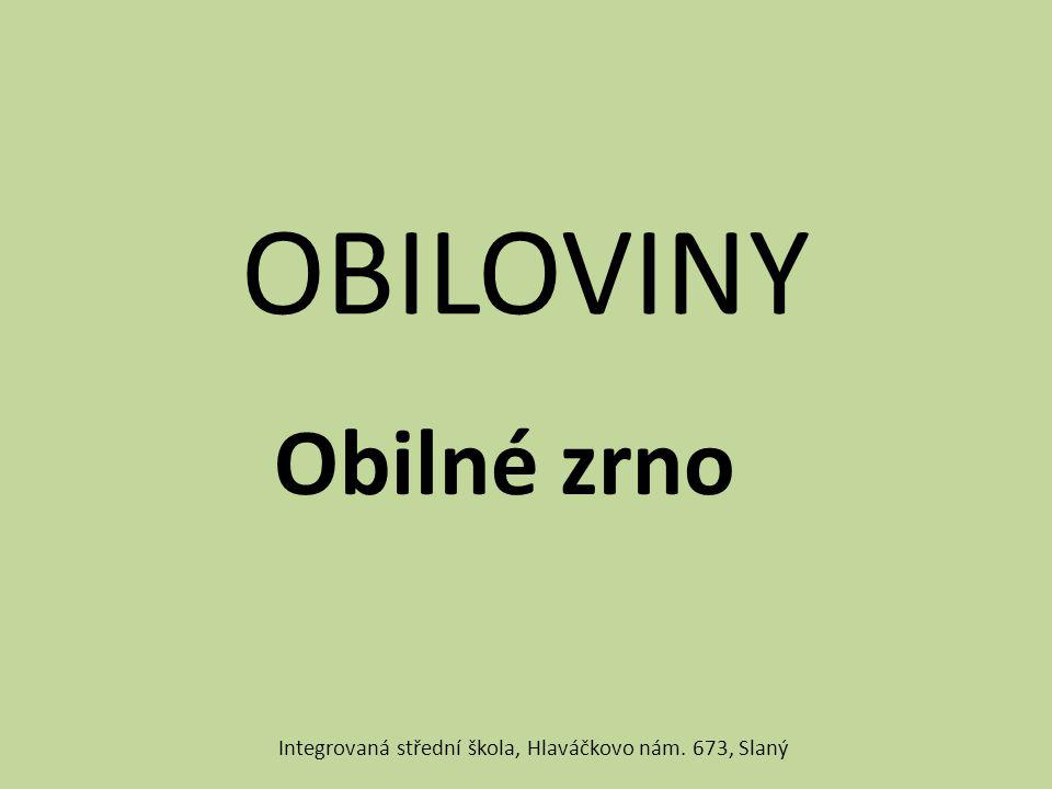 OBILOVINY Obilné zrno Integrovaná střední škola, Hlaváčkovo nám. 673, Slaný