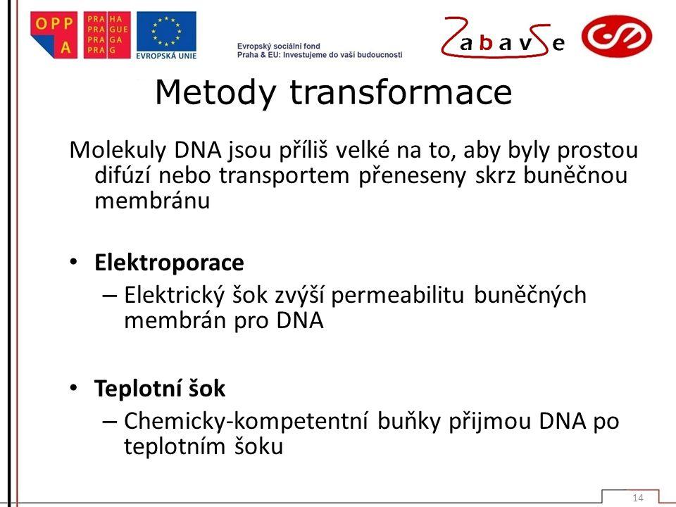Metody transformace Molekuly DNA jsou příliš velké na to, aby byly prostou difúzí nebo transportem přeneseny skrz buněčnou membránu Elektroporace – Elektrický šok zvýší permeabilitu buněčných membrán pro DNA Teplotní šok – Chemicky-kompetentní buňky přijmou DNA po teplotním šoku 14