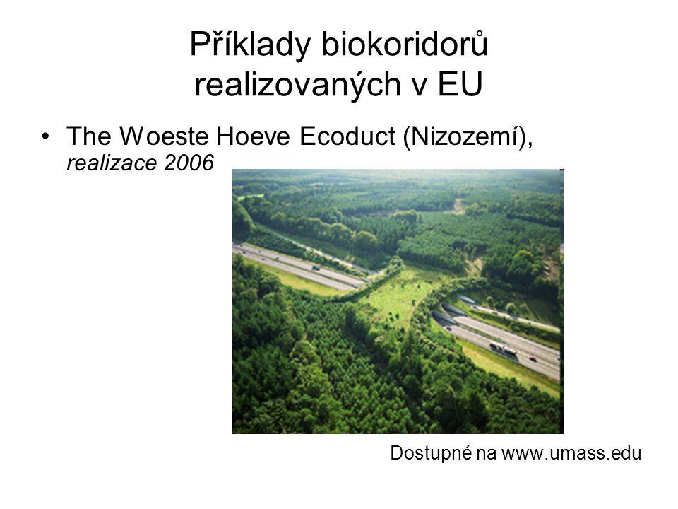 Příklady biokoridorů realizovaných v EU The Woeste Hoeve Ecoduct (Nizozemí), realizace 2006 Dostupné na www.umass.edu