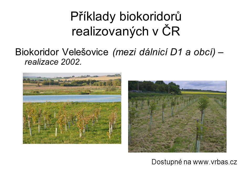 Příklady biokoridorů realizovaných v ČR Biokoridor Velešovice (mezi dálnicí D1 a obcí) – realizace 2002. Dostupné na www.vrbas.cz