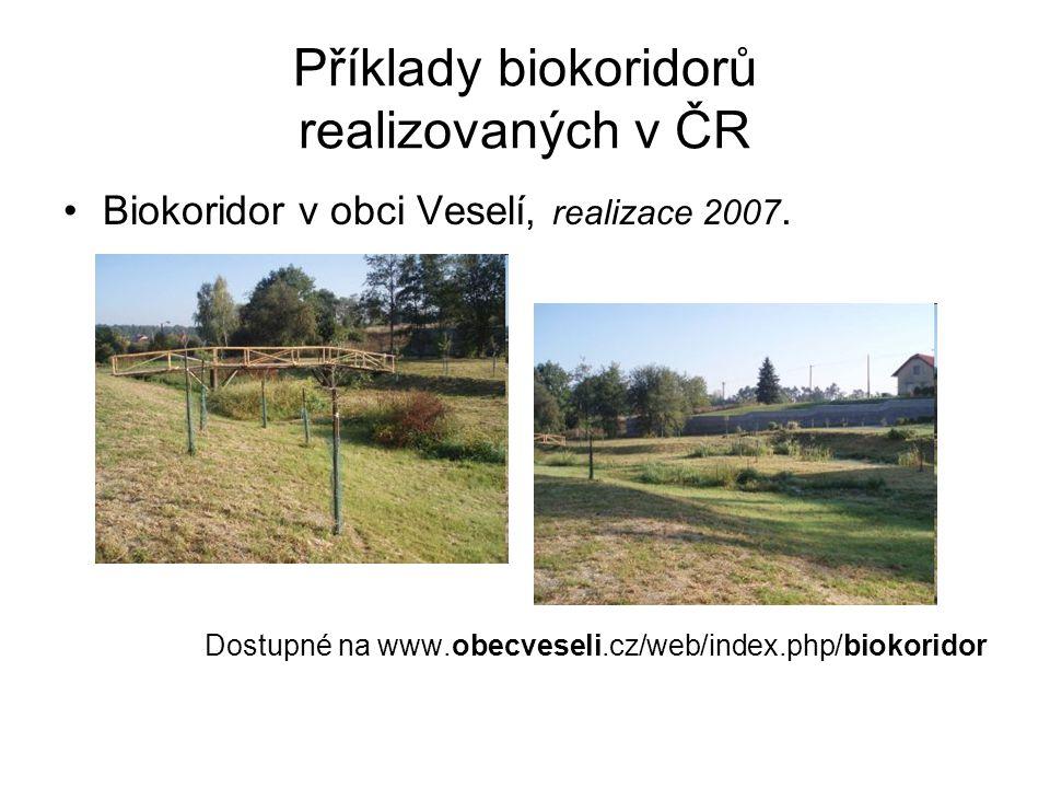 Příklady biokoridorů realizovaných v ČR Biokoridor v obci Veselí, realizace 2007. Dostupné na www.obecveseli.cz/web/index.php/biokoridor