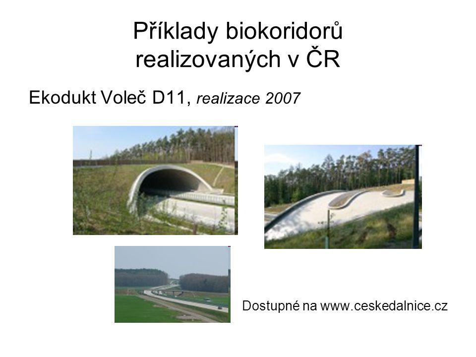 Příklady biokoridorů realizovaných v ČR Ekodukt Voleč D11, realizace 2007 Dostupné na www.ceskedalnice.cz