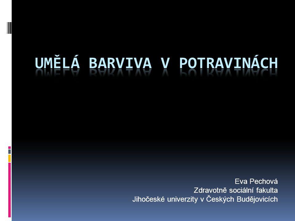 Eva Pechová Zdravotně sociální fakulta Jihočeské univerzity v Českých Budějovicích