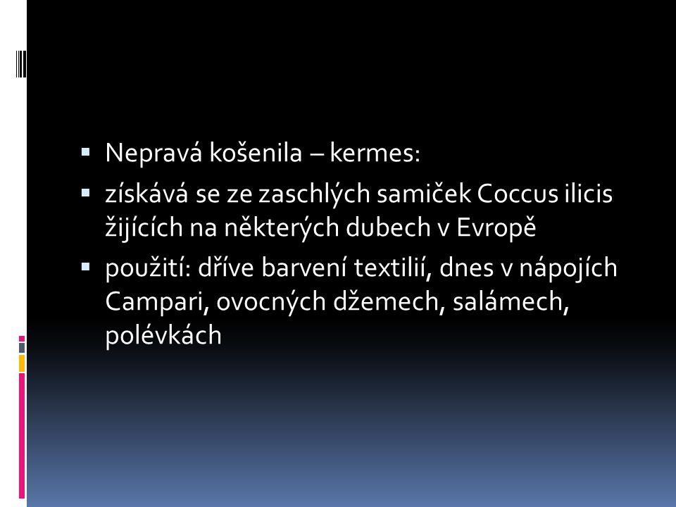  Nepravá košenila – kermes:  získává se ze zaschlých samiček Coccus ilicis žijících na některých dubech v Evropě  použití: dříve barvení textilií,