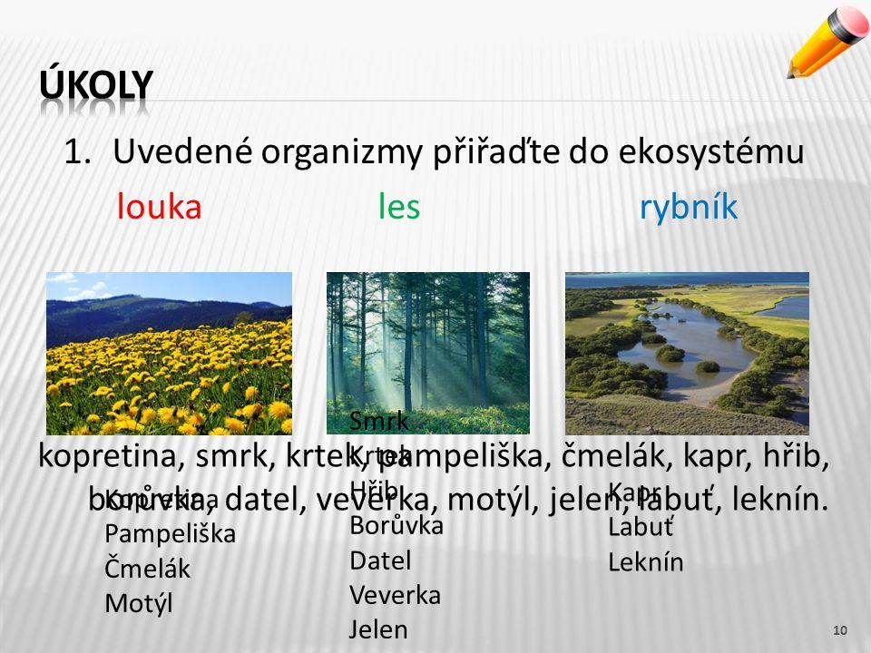 1.Uvedené organizmy přiřaďte do ekosystému loukales rybník 10 Kopretina Pampeliška Čmelák Motýl kopretina, smrk, krtek, pampeliška, čmelák, kapr, hřib