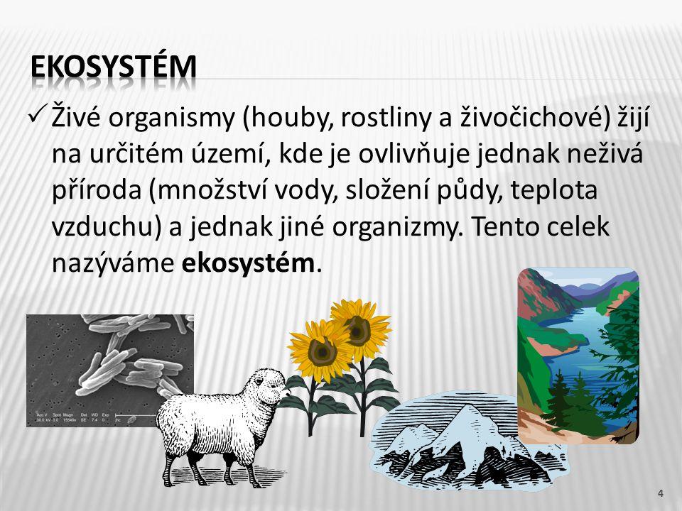  Živé organismy (houby, rostliny a živočichové) žijí na určitém území, kde je ovlivňuje jednak neživá příroda (množství vody, složení půdy, teplota v