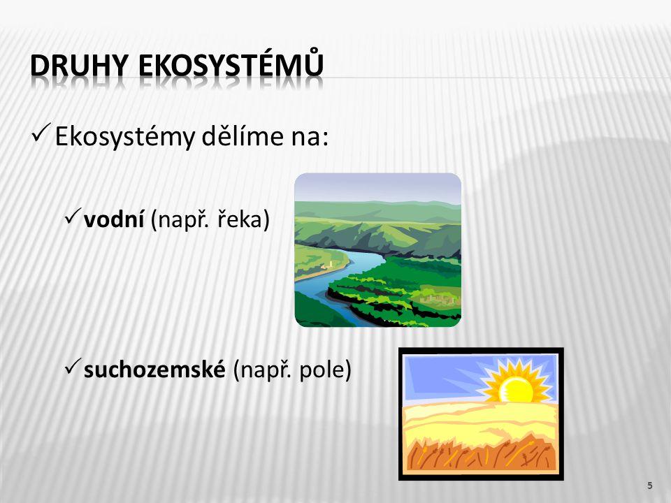  Ekosystémy dělíme na:  vodní (např. řeka)  suchozemské (např. pole) 5