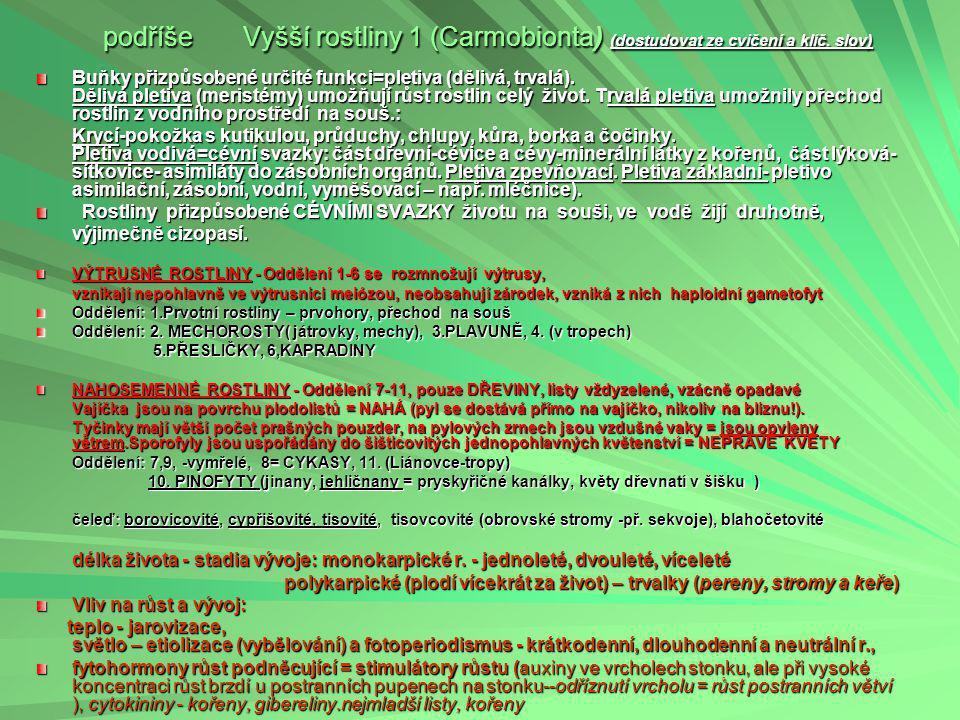 ŘÍŠE ROSTLINY (PLANTAE) 2 (dostudovat ze cvičení a klíč. slov) podříše Nižší rostliny (Protobionta) tělo stélka jednobuněčná i mnohobuněčná, bez cévní