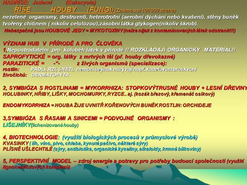 Bakterie – VÝZNAM BAKTERIÍ V PŘÍRODĚ A PRO ČLOVĚKA 1,Nepostradatelní pro koloběh látek v přírodě !! ROZKLÁDAJÍ ORGANICKÝ MATERIÁL!! 2,Využití v biotec