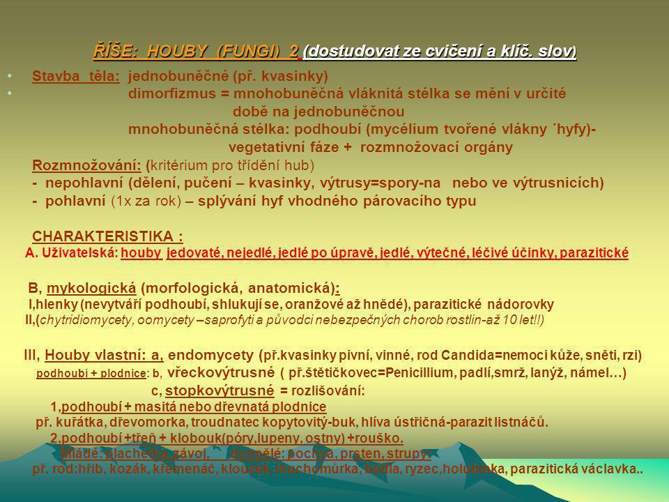 NADŘÍŠE: Jaderní (Eukaryota) ŘÍŠE HOUBY (FUNGI) (Známo asi 100 000 druhů) nezelené organismy, destruenti, heterotrofní (aerobní dýchání nebo kvašení),