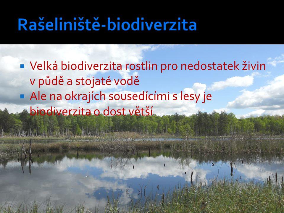  Velká biodiverzita rostlin pro nedostatek živin v půdě a stojaté vodě  Ale na okrajích sousedícími s lesy je biodiverzita o dost větší