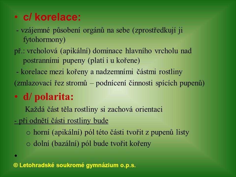 © Letohradské soukromé gymnázium o.p.s. c/ korelace: - vzájemné působení orgánů na sebe (zprostředkují ji fytohormony) př.: vrcholová (apikální) domin