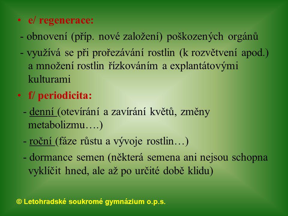 © Letohradské soukromé gymnázium o.p.s. e/ regenerace: - obnovení (příp. nové založení) poškozených orgánů - využívá se při prořezávání rostlin (k roz