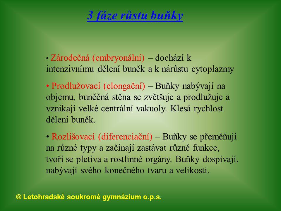 © Letohradské soukromé gymnázium o.p.s. Osívka jarní Netýkavka Ječmen