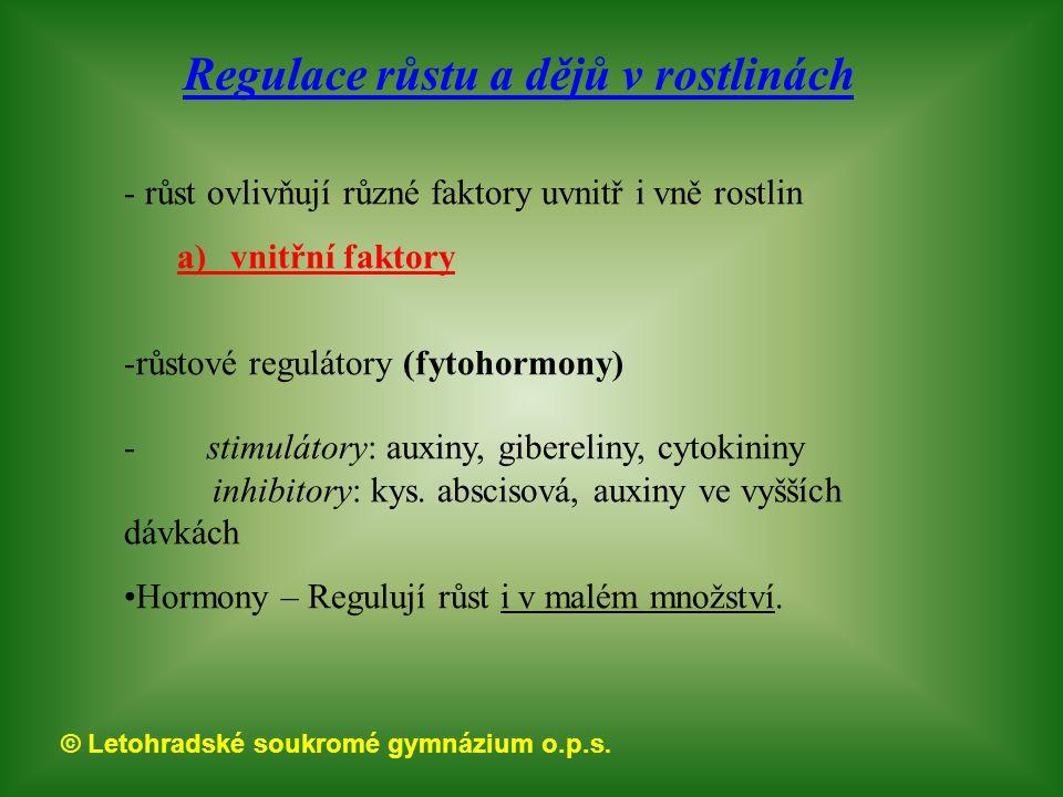 © Letohradské soukromé gymnázium o.p.s.otázky faktory ovlivňující růst.