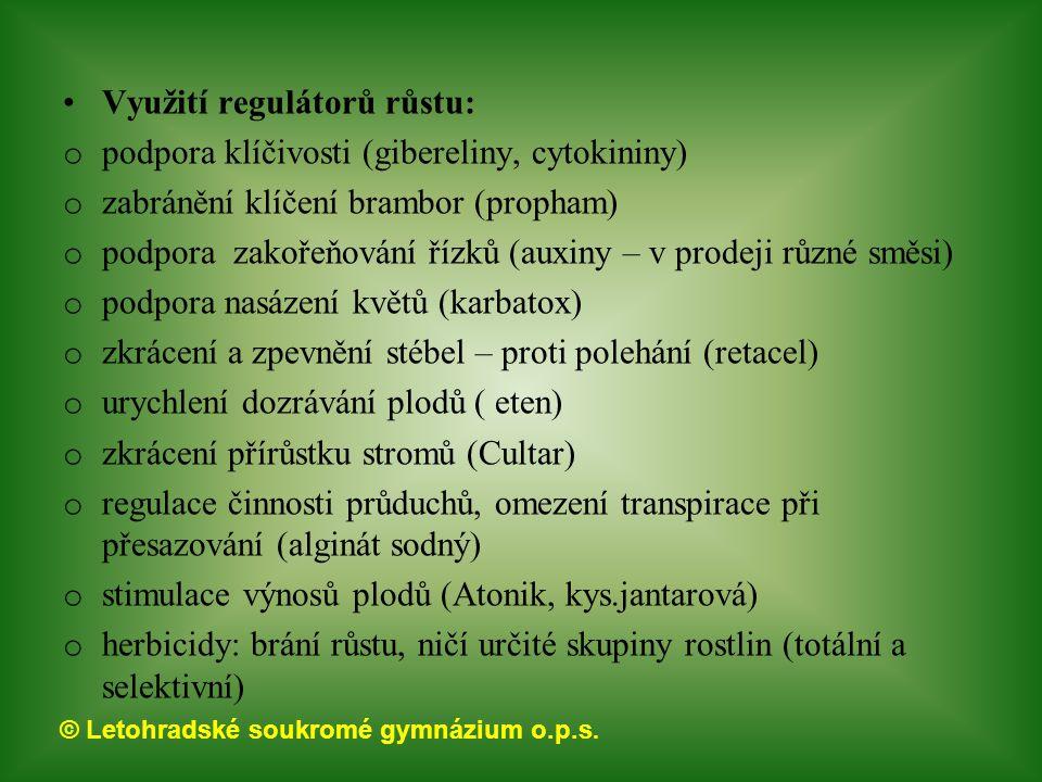 © Letohradské soukromé gymnázium o.p.s. Využití regulátorů růstu: o podpora klíčivosti (gibereliny, cytokininy) o zabránění klíčení brambor (propham)