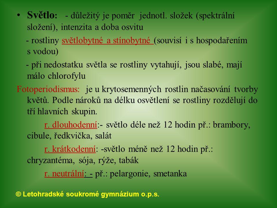 © Letohradské soukromé gymnázium o.p.s. Světlo : - důležitý je poměr jednotl. složek (spektrální složení), intenzita a doba osvitu - rostliny světloby